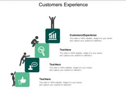 Customers Experience Ppt Powerpoint Presentation Slides Format Cpb