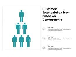 Customers Segmentation Icon Based On Demographic