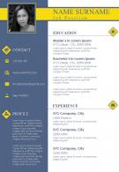 Customizable A4 Resume Template For Professionals