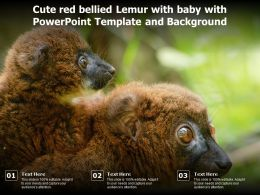 Cute Red Bellied Lemur With Baby With Powerpoint Template And Background
