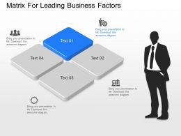 cy Matrix For Leading Business Factors Powerpoint Template