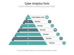 Cyber Analytics Tools Ppt Powerpoint Presentation Professional Slide Portrait Cpb