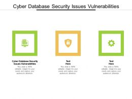 Cyber Database Security Issues Vulnerabilities Ppt Powerpoint Presentation Outline Ideas Cpb