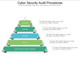 Cyber Security Audit Procedures Ppt Powerpoint Presentation Infographics Slides Cpb