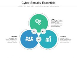 Cyber Security Essentials Ppt Powerpoint Presentation Model Rules Cpb
