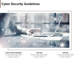 Cyber Security Guidelines Ppt Powerpoint Presentation Summary Graphics Cpb