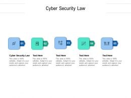 Cyber Security Law Ppt Powerpoint Presentation File Images Cpb
