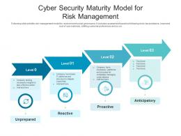Cyber Security Maturity Model For Risk Management