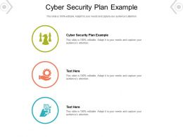 Cyber Security Plan Example Ppt Powerpoint Presentation Diagram Ppt Cpb