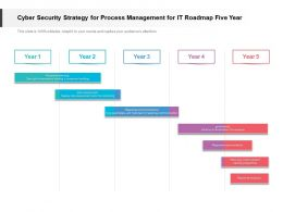 Cyber Security Strategy For Process Management For IT Roadmap Five Year