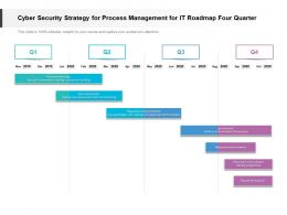 Cyber Security Strategy For Process Management For IT Roadmap Four Quarter