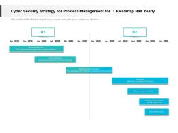 Cyber Security Strategy For Process Management For IT Roadmap Half Yearly