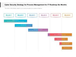 Cyber Security Strategy For Process Management For IT Roadmap Six Months