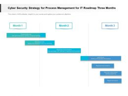Cyber Security Strategy For Process Management For IT Roadmap Three Months