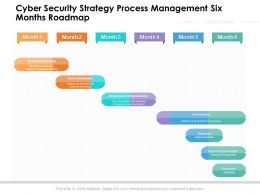 Cyber Security Strategy Process Management Six Months Roadmap