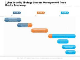 Cyber Security Strategy Process Management Three Months Roadmap