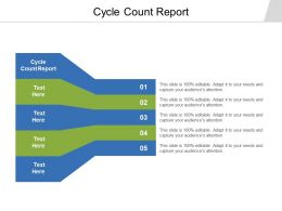 Cycle Count Report Ppt Powerpoint Presentation Pictures Background Cpb