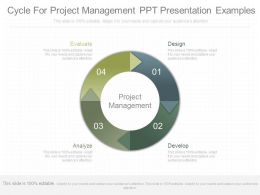 Cycle For Project Management Ppt Presentation Examples