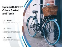 Cycle With Brown Colour Basket And Torch
