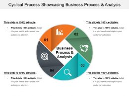 Cyclical Process Showcasing Business Process And Analysis Ppt Slide
