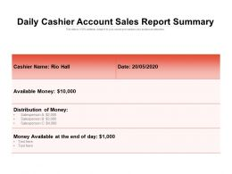 Daily Cashier Account Sales Report Summary
