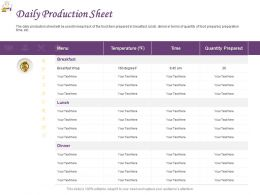 Daily Production Sheet Ppt Powerpoint Presentation Show Background Designs