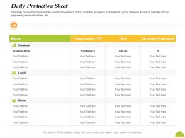 Daily Production Sheet Quantity Prepared Ppt Powerpoint Presentation Styles Structure