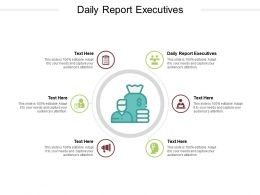 Daily Report Executives Ppt Powerpoint Presentation Outline Demonstration Cpb