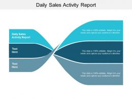 Daily Sales Activity Report Ppt Powerpoint Presentation Gallery Infographics Cpb