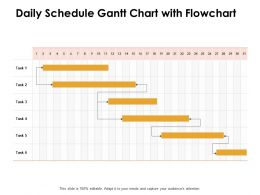 Daily Schedule Gantt Chart With Flowchart Ppt Powerpoint Presentation File Diagrams