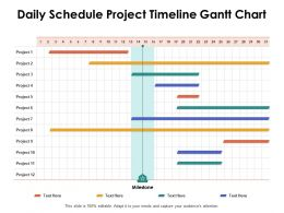Daily Schedule Project Timeline Gantt Chart Ppt Powerpoint Presentation Sample