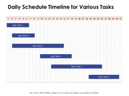 Daily Schedule Timeline For Various Tasks Ppt Powerpoint Presentation Styles