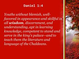 daniel_1_4_young_men_without_any_physical_defect_powerpoint_church_sermon_Slide04