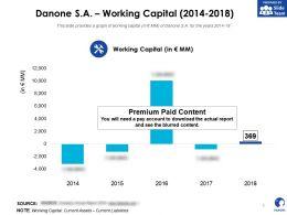 Danone SA Working Capital 2014-2018