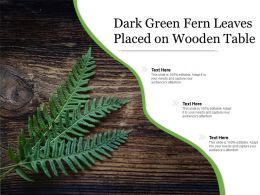 Dark Green Fern Leaves Placed On Wooden Table