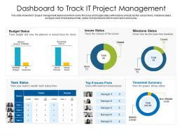 Dashboard To Track IT Project Management