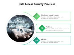 Data Access Security Practices Ppt Powerpoint Presentation Infographic Template File Cpb