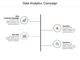 Data Analytics Campaign Ppt Powerpoint Presentation Infographics Layouts Cpb