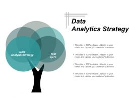 Data Analytics Strategy Ppt Powerpoint Presentation Infographics Example Introduction Cpb