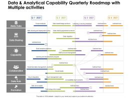 Data And Analytical Capability Quarterly Roadmap With Multiple Activities