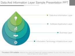 Data And Information Layer Sample Presentation Ppt