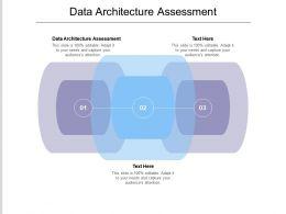 Data Architecture Assessment Ppt Powerpoint Presentation Model Design Ideas Cpb