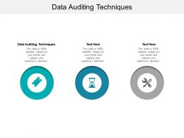 Data Auditing Techniques Ppt Powerpoint Presentation Icon Clipart Cpb