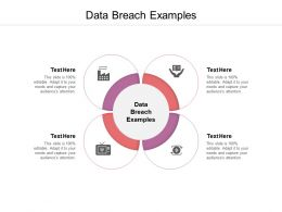 Data Breach Examples Ppt Powerpoint Presentation Gallery Graphics Tutorials Cpb