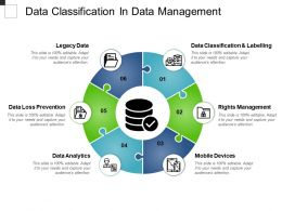 Data Classification In Data Management Powerpoint Topics