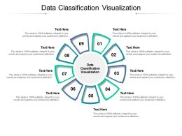 Data Classification Visualization Ppt Powerpoint Presentation Professional Background Images Cpb