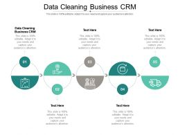 Data Cleaning Business CRM Ppt Powerpoint Presentation Slides Designs Download Cpb