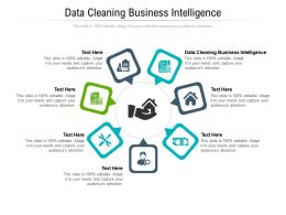 Data Cleaning Business Intelligence Ppt Powerpoint Presentation Layouts Ideas Cpb