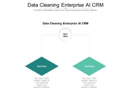 Data Cleaning Enterprise AI CRM Ppt Powerpoint Presentation Styles Example Cpb