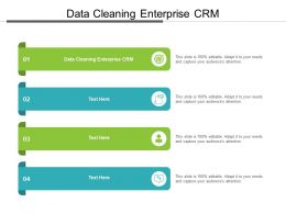 Data Cleaning Enterprise CRM Ppt Powerpoint Presentation Slides Gridlines Cpb